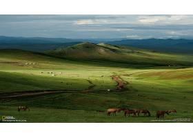 地球,风景,壁纸,(96)