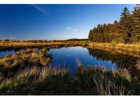 地球,风景,夏天,河,森林,天空,壁纸,图片