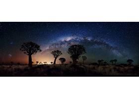 地球,风景,天空,夜晚,乳白色的,方法,布满星星的,天空,沙漠,约书