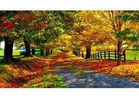 地球,小路,秋天,壁纸,图片