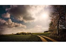 地球,小路,艺术的,树,路,云,壁纸,