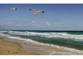 地球,海滩,壁纸,(315)