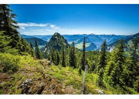 地球,风景,森林,山,夏天,壁纸,图片
