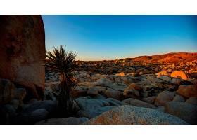 地球,风景,沙漠,壁纸,