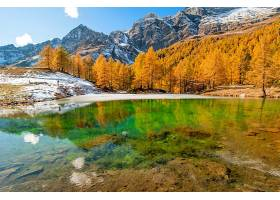 地球,风景,自然,森林,秋天,山,湖,反射,壁纸,图片