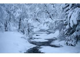地球,冬天的,壁纸,(38)