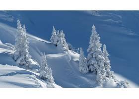 地球,冬天的,雪,壁纸,(5)