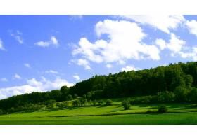 地球,风景,壁纸,(315)