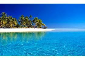 地球,热带的,手掌,树,海滩,地平线,岛,蓝色,海,夏天,壁纸,图片
