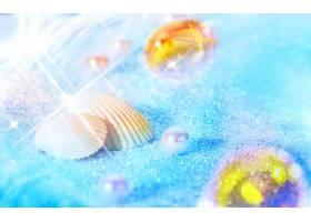 地球,壳,海滩,热带的,夏天,蓝色,珍珠,壁纸,图片