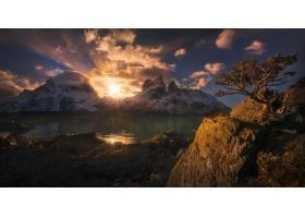 地球,阳光,自然,巴塔哥尼亚,树,山,岩石,壁纸,图片