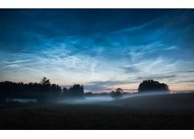 地球,雾,自然,夜晚,天空,树,壁纸,图片