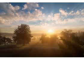 地球,日出,夏天,早晨,树,阳光,云,壁纸,图片