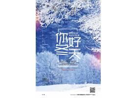 摄影简约你好冬天季节问候宣传海报
