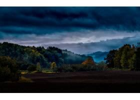 地球,秋天,俄勒冈州,岛,森林,壁纸,图片