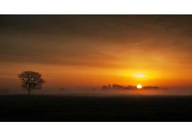 地球,日落,自然,风景,农村,树,壁纸,图片