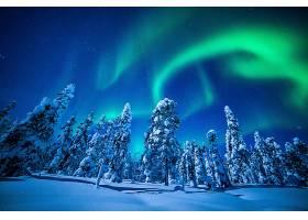 地球,曙光,北极星,冬天的,森林,壁纸,图片