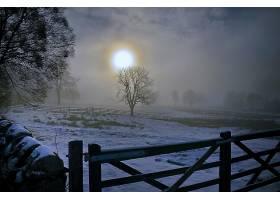 地球,日出,雪,风景,自然,树,农村,壁纸,图片