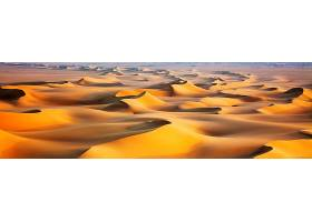 地球,沙漠,壁纸,(56)