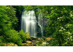 地球,瀑布,瀑布,自然,绿色的,森林,壁纸,图片