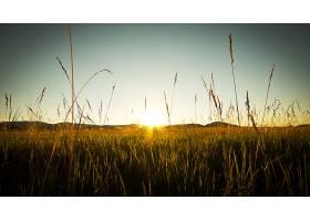 地球,阳光,壁纸,(13)