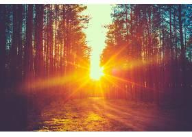 地球,阳光,壁纸,(216)