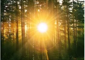 地球,阳光,壁纸,(217)