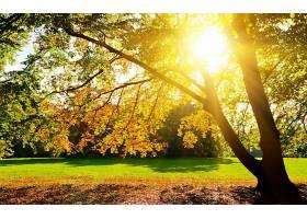 地球,阳光,壁纸,(28)