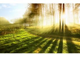 地球,阳光,壁纸,(29)