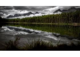 地球,湖,湖,自然,反射,山,森林,壁纸,图片