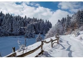 地球,冬天的,自然,雪,小路,栅栏,壁纸,图片