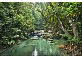 地球,河,自然,森林,壁纸,(3)图片