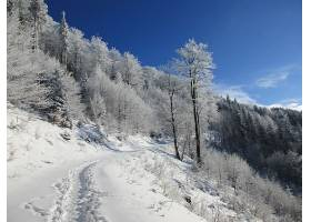 地球,冬天的,壁纸,(56)