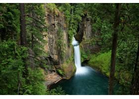 地球,瀑布,瀑布,岩石,树,森林,壁纸,(2)图片