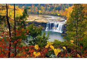 地球,瀑布,瀑布,岩石,秋天,叶子,树,森林,壁纸,图片