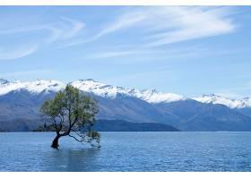 地球,湖,湖,自然,树,山,壁纸,图片