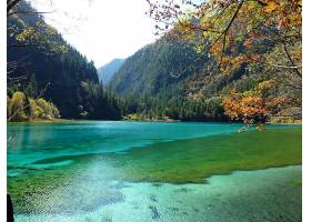 地球,湖,湖,自然,森林,壁纸,图片
