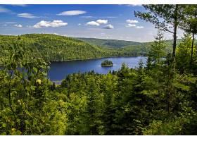 地球,湖,湖,自然,森林,风景,树,壁纸,图片