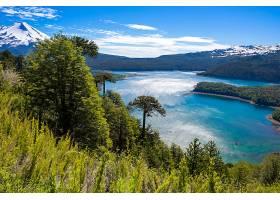 地球,湖,湖,自然,风景,树,壁纸,图片