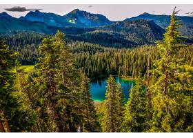 地球,湖,湖,自然,风景,森林,山,树,壁纸,图片