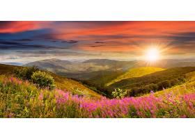 地球,风景,自然,天空,山,草地,粉红色,花,日出,壁纸,图片