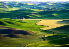 地球,风景,自然,小山,领域,壁纸,图片