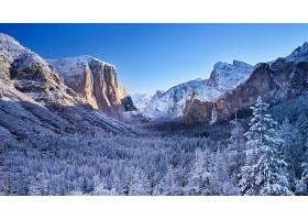 地球,冬天的,山,雪,树,壁纸,图片