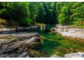 地球,河,岩石,自然,森林,壁纸,图片