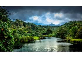 地球,河,自然,丛林,壁纸,图片
