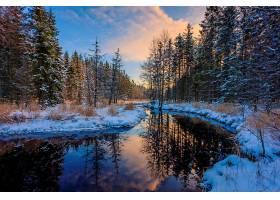 地球,河,自然,反射,冬天的,雪,森林,壁纸,图片