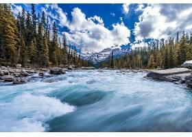 地球,河,自然,山,森林,岩石,云,树,壁纸,图片