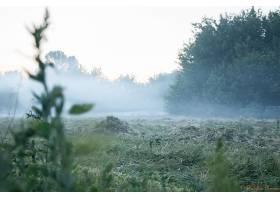 地球,雾,壁纸,(6)图片