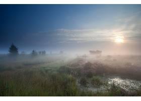 地球,雾,自然,天空,壁纸,图片