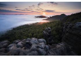 地球,雾,自然,日出,地平线,森林,壁纸,图片